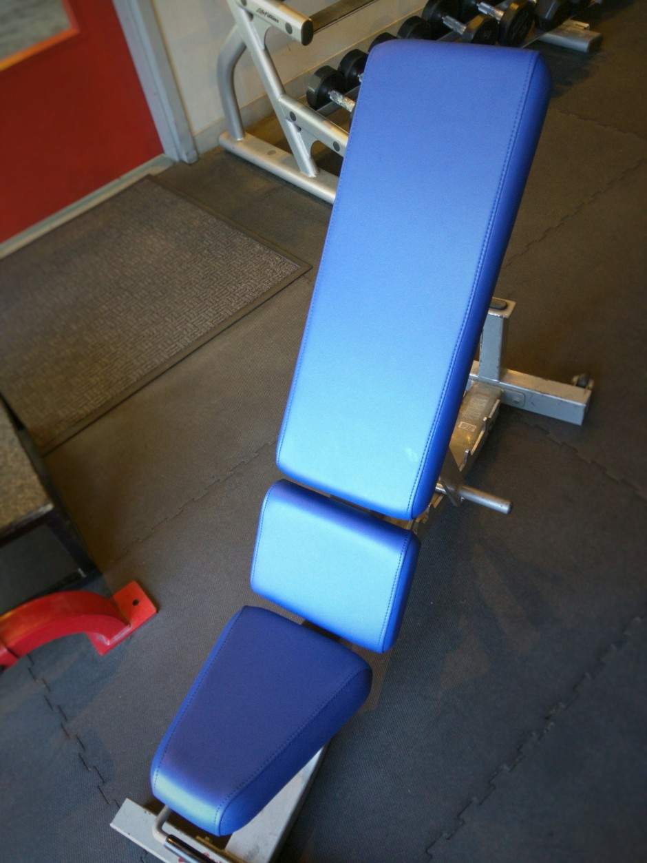 Life Fitness Adjustable Incline Recovered in Royal BoltaSport Olympus